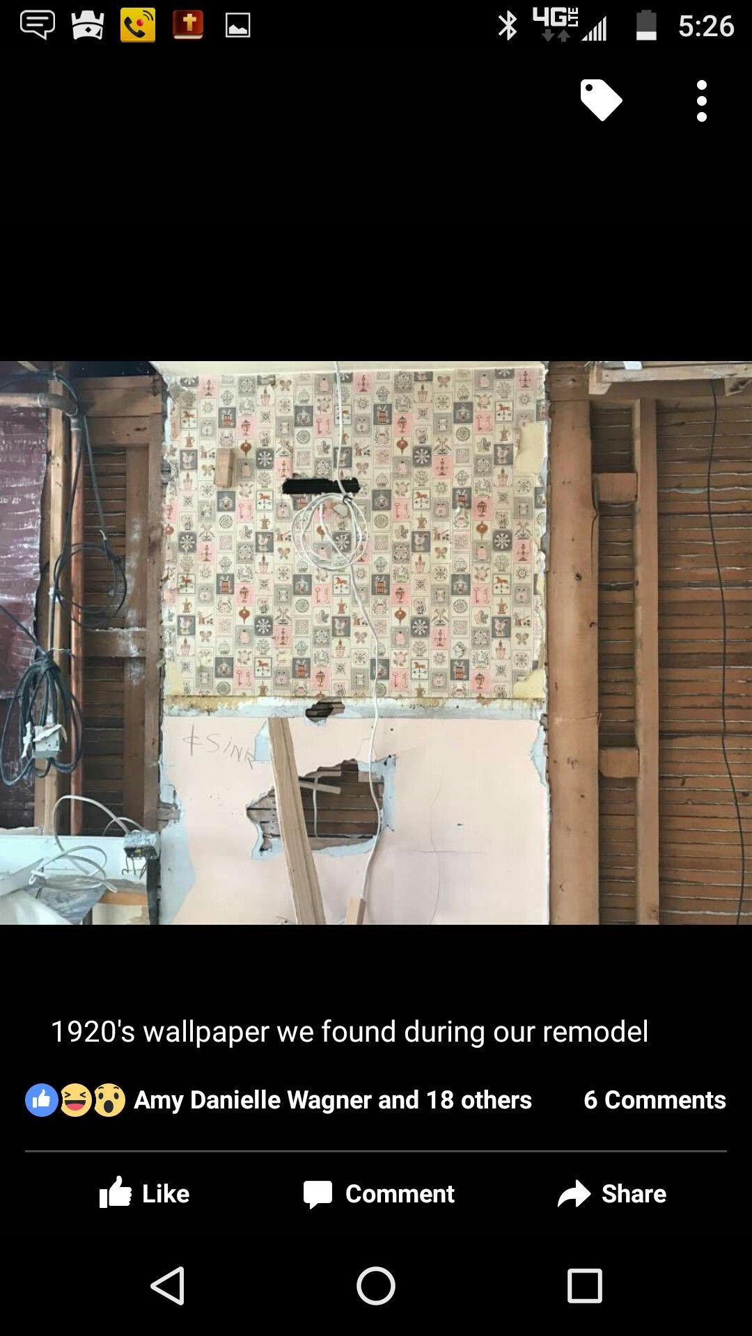 1920's Wallpaper, discovered in 2017 in Oshkosh, WI