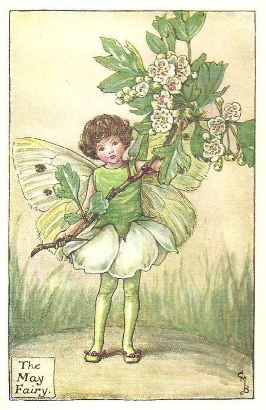 The song of the May Fairy: My buds, they cluster small and green; The sunshine gaineth heat: Soon shall the hawthorn tree be clothed As with a snowy sheet. O magic sight, the hedge is white. My scent is very sweet; And lo, where I am coming indeed, The Spring and Summer meet.