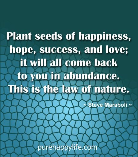 Quotes About Planting Seeds For Life Inspiration Quotes More On Purehappylife  Plant Seeds Of Happiness Hope