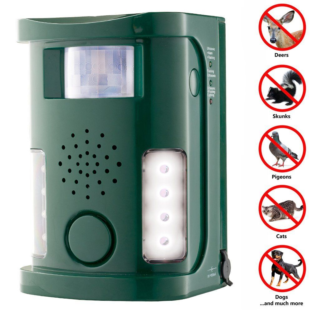 ultrasonic insect repellent reviews Pest control