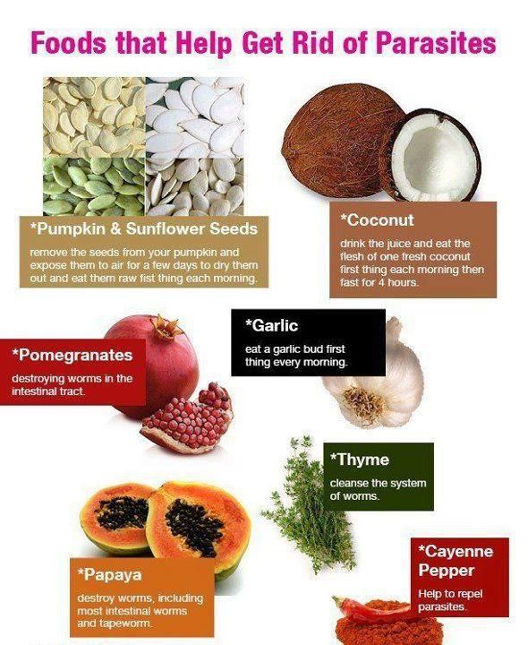 Foods That Help Get Rid Of Parasites 1 Pomegranate 2 Thyme 3