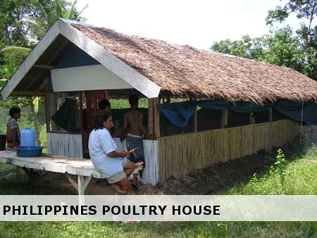 Design Of A Piggery House Pig House Philippine Houses Pig Farming