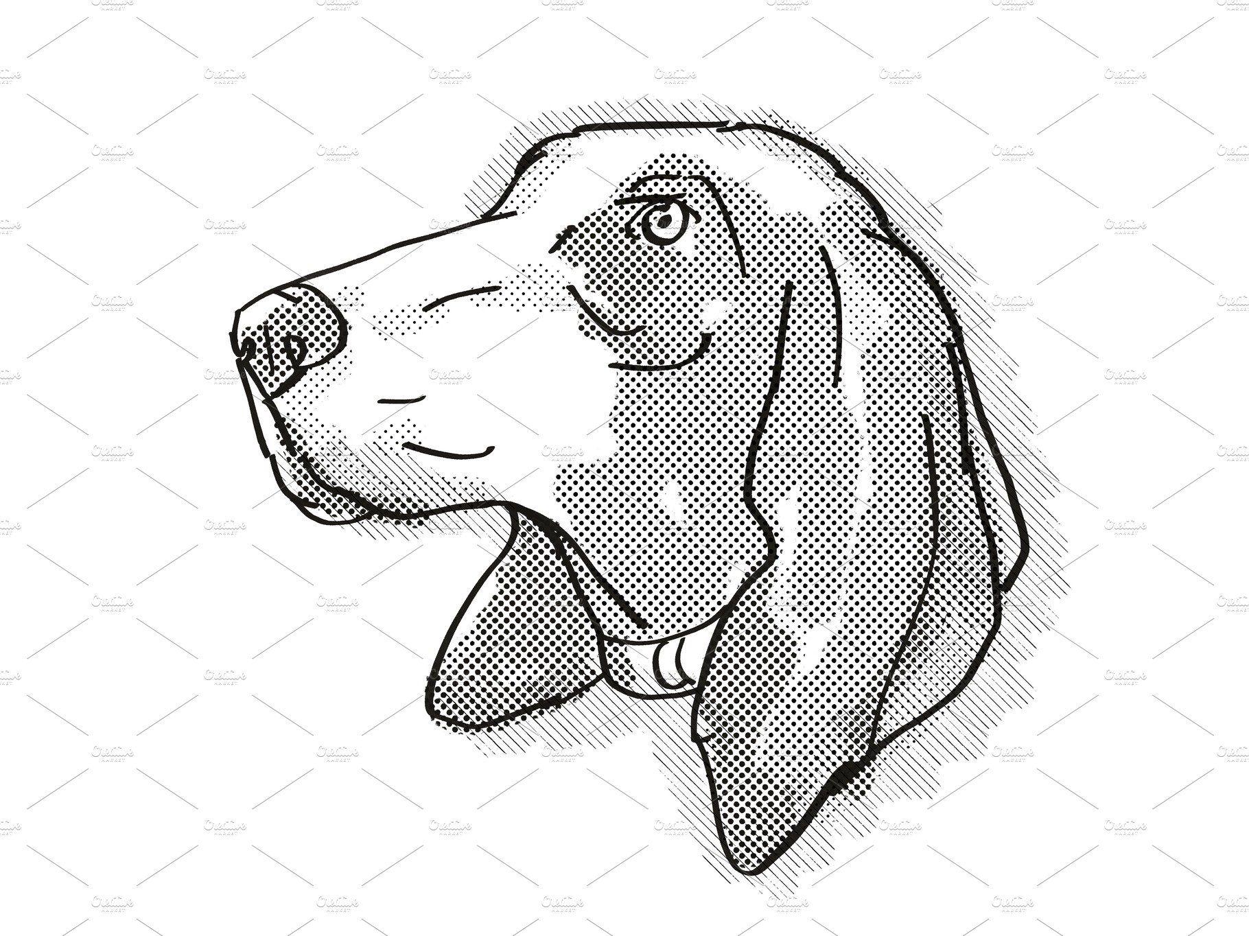 Bracco Italiano Dog Breed Cartoon In 2021 Cartoon Style Drawing Retro Illustration Cartoon Styles
