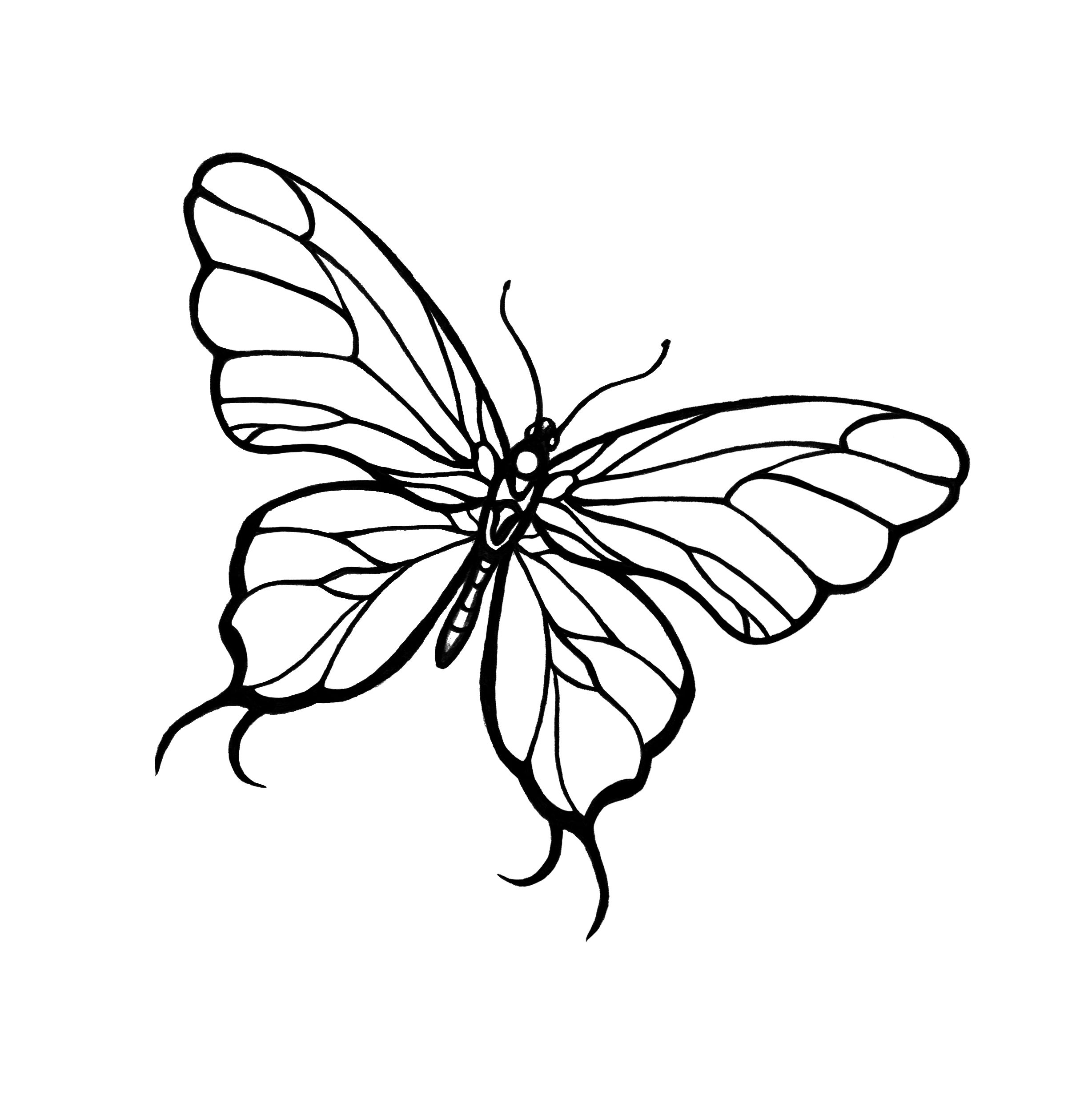 Simple Butterfly Drawing: Little Gift From TattooMeNow