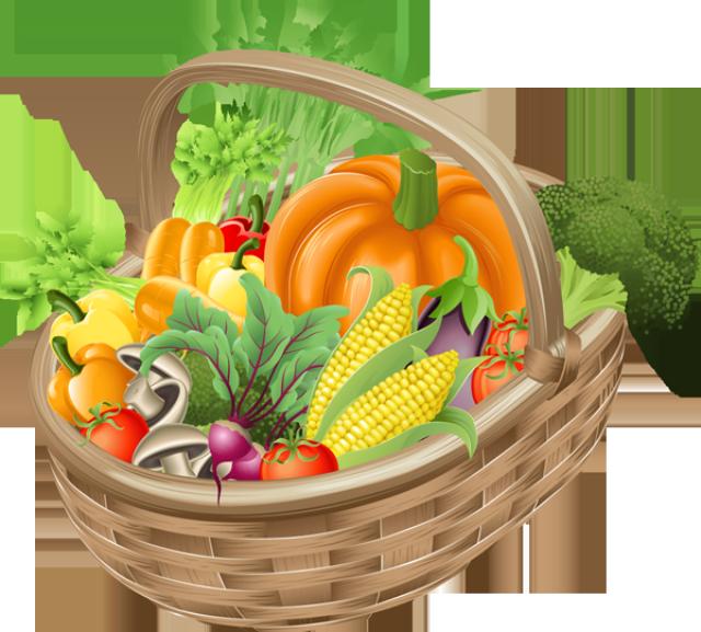 Vegetable Garden Graphic With Vegetable Garden Clipart Kids Garden