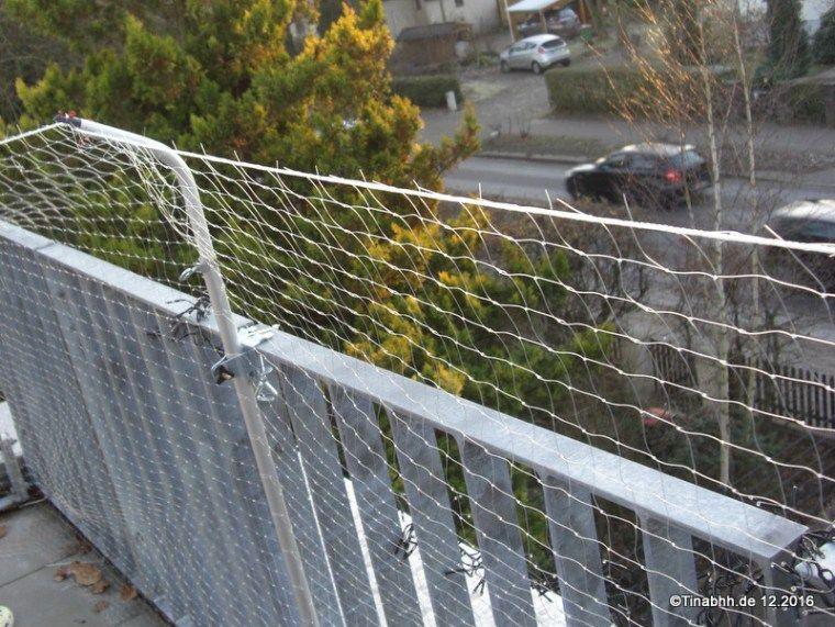 katzensicherheit auf dem balkon katzenschutznetz netz. Black Bedroom Furniture Sets. Home Design Ideas
