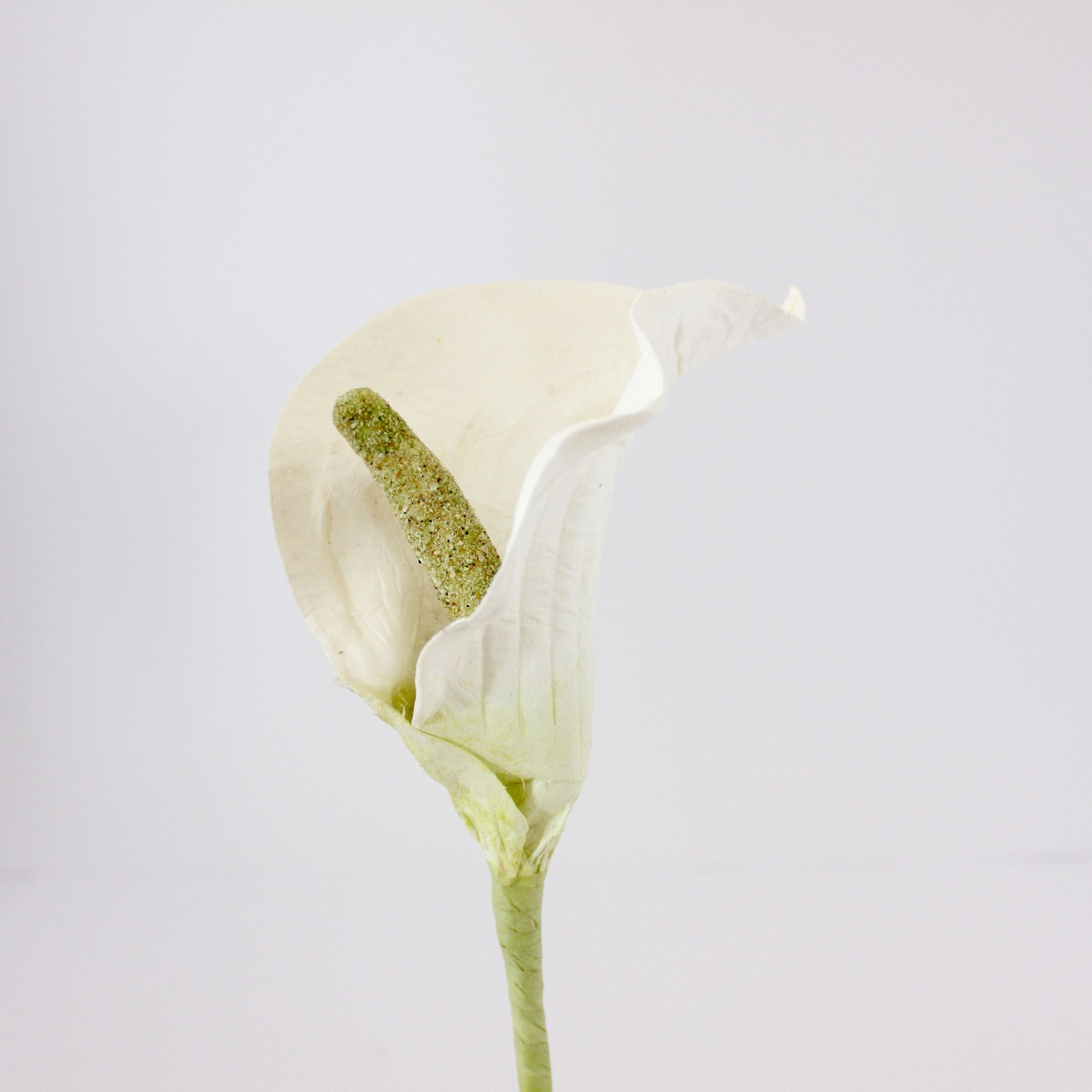 Long stemmed paper calla lily white paper flowers australia long stemmed paper calla lily white paper flowers australia mightylinksfo