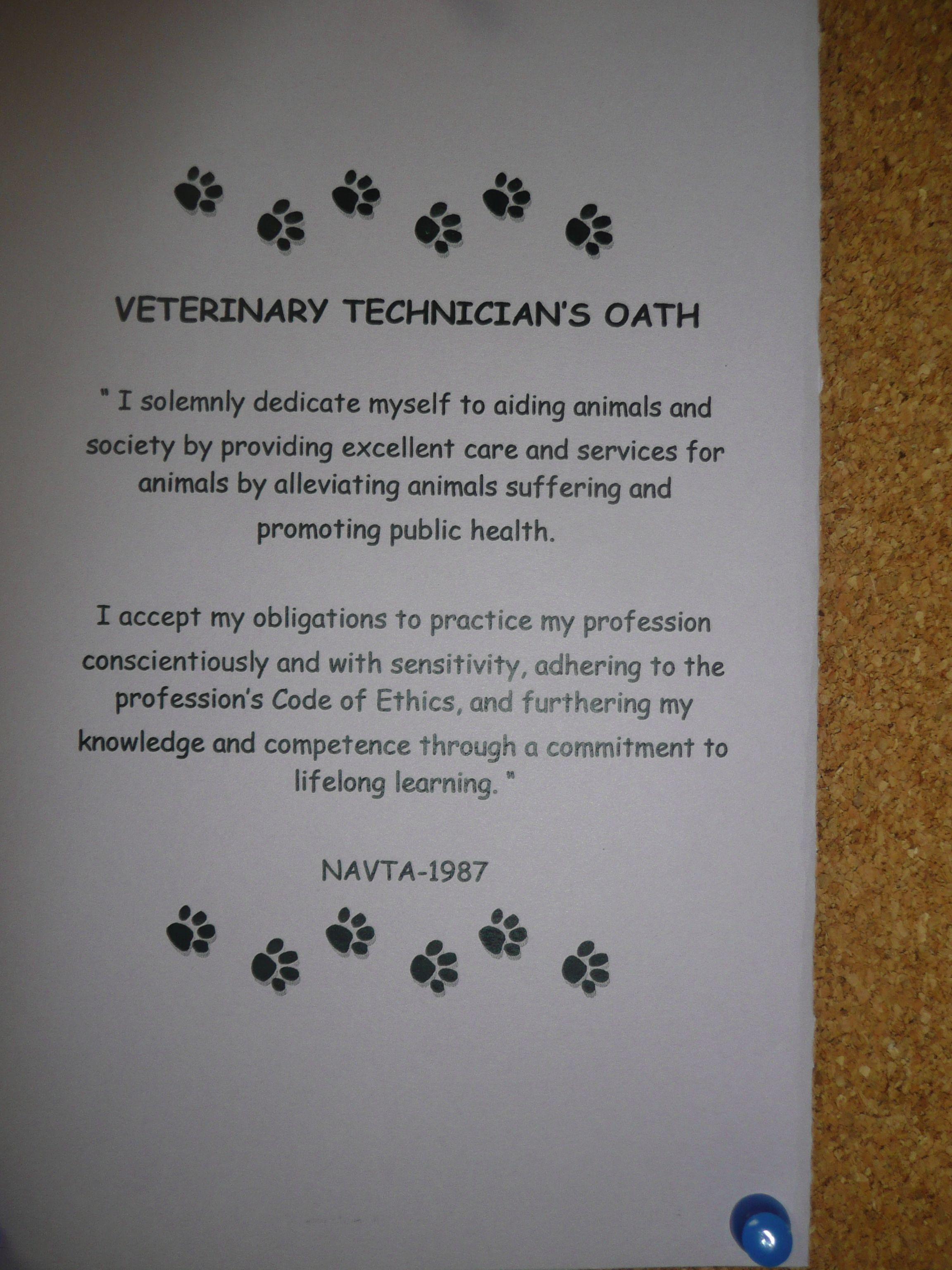 Veterinary Technicians Oath Veterinary Pets Vets Dogs Cats Vet Tech Student Vet Tech Humor Veterinary Tech