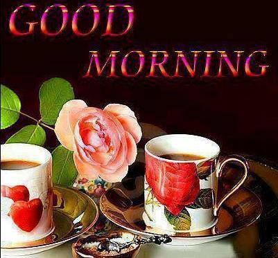 Good Morning Sweetie I Hope Your Feeling Better And Having A Better
