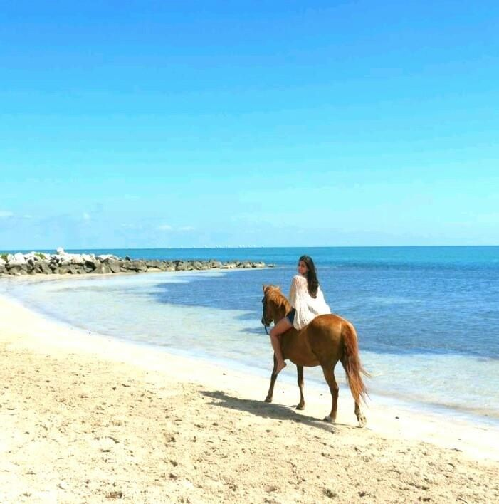 Horseback Riding On The Beach In Miami