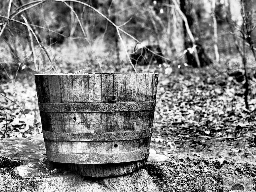 Planter by Eric Woods on 500px