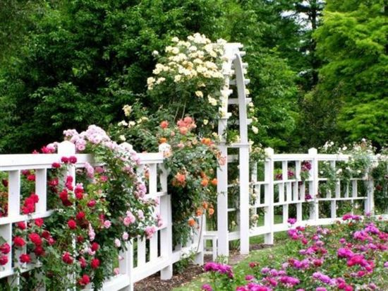 Gartenzaun Blumen-Gestaltung Ideen Arbors Pinterest Walkways - garten blumen gestaltung