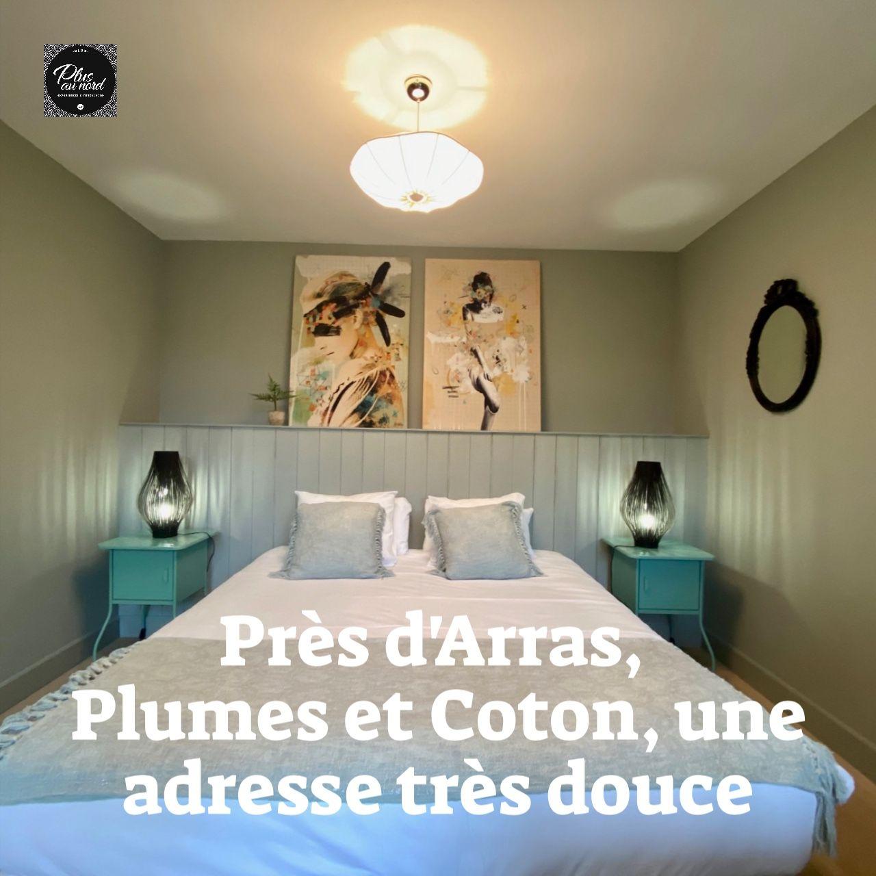 Pres D Arras Plumes Et Coton Une Adresse Tres Douce En 2020 Maison D Hotes Maison Maison Bourgeoise