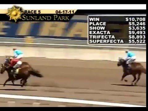 Pin By Stallionmexsearch On Videos De Carreras De Caballos Horse