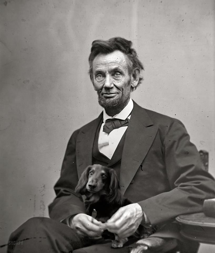 Even Abe Had A Dachshund Which Is Not True Mr Lincoln Had A