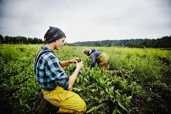 Should Farming Get You out of Paying Your Student Loan Debt? | TakePart