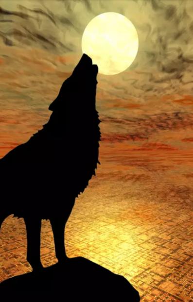 Pleine Lune Les Loups Hurlent Loup Dessin Dessin De Fille