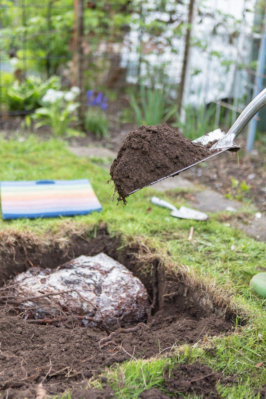 Essbare Pilze Im Garten Zuchten So Legt Man Ein Pilz Beet Im Garten An Pilze Im Garten Garten Pflanzen Essbare Pilze