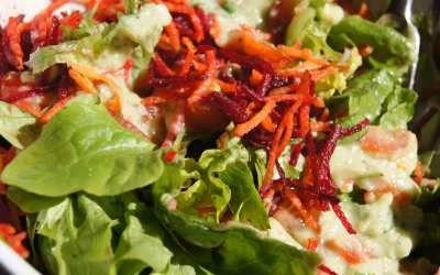 Salada Colorida com Molho de Abacate