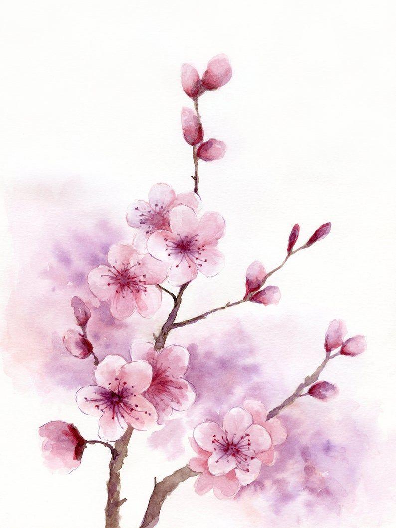 Cherry Blossom Printable Wall Art Sakura Watercolor Painting Floral Spring Digital Print Download Cherry Blossom Art Cherry Blossom Watercolor Cherry Blossom Drawing