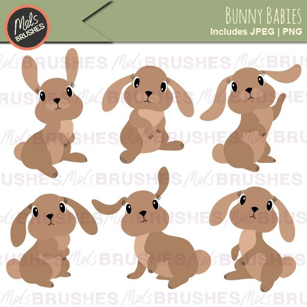Baby Bunny Rabbit Clipart Illustrations | Mygrafico Illustrations ...