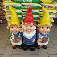 This Ed Me Up In Asda Gnomes Next To Grow Bags