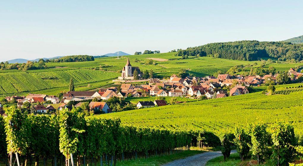Campina Francesa De La Mano Del Vino Alsacia Sur De Francia