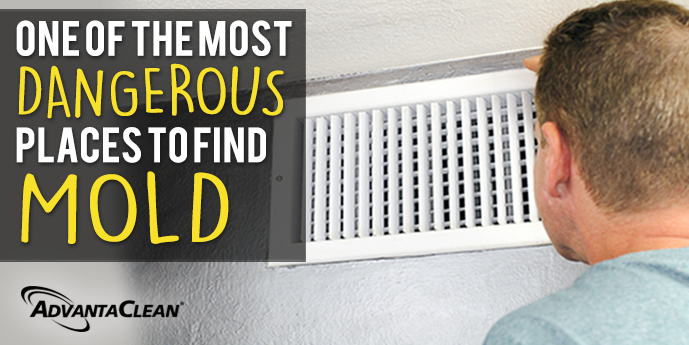 Mold can develop in all types of places, even out of sight