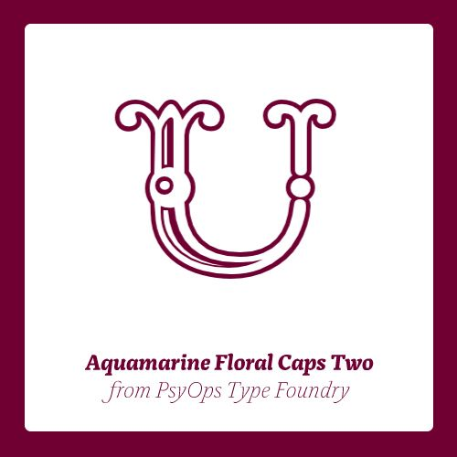 Aquamarine Floral Caps Two OT published by PsyOps Type Foundry. #fonts #fontshop