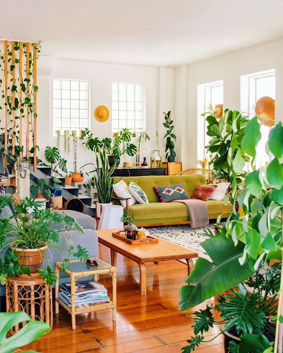 Ohh Deer On Instagram This Is Just Our Dream House Anyone Else Image From Mrcigar Via Ho Jungle Living Room Living Room Decor Jungle Living Room Ideas Jungle living room ideas