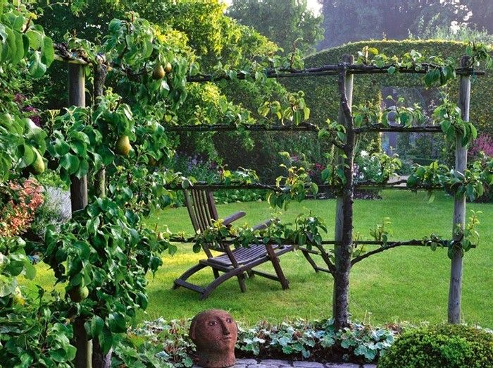 arbres fruitiers pommiers en palmettes ferraguti 4 tages dans le jardin jardin potager. Black Bedroom Furniture Sets. Home Design Ideas