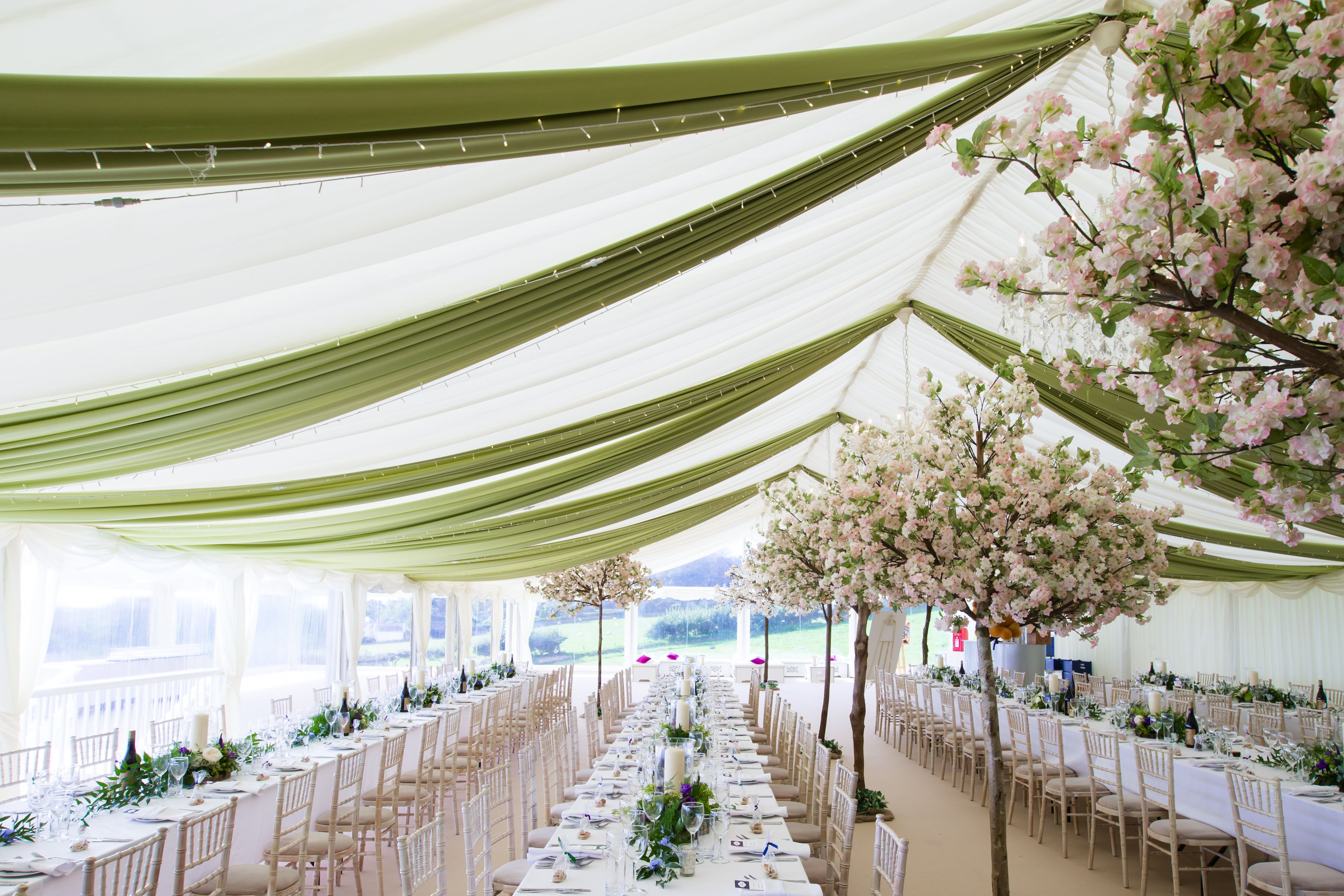 Elegant Drapery And Cherry Blossom Trees A Wonderful Addition For A Summer Marquee Wedding Marquee Wedding Garden Wedding Reception Wedding Draping