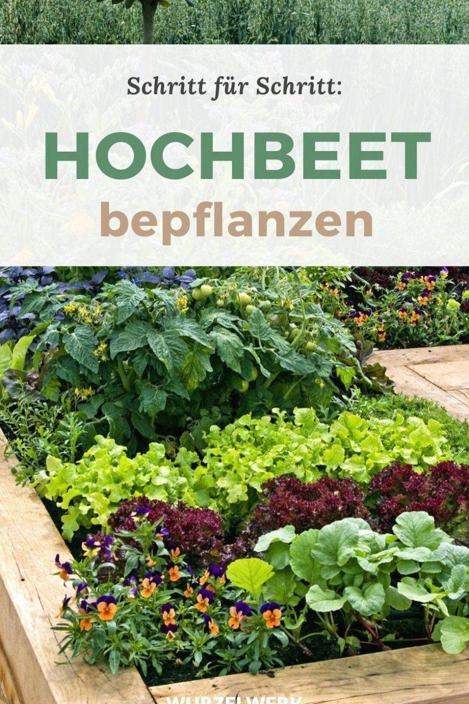 Vorheriges Welt Verschwenderisches Dekor In 2020 Garden Inspiration Plants Back Gardens