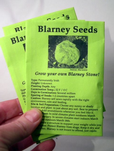 Grow your own Blarney Stone