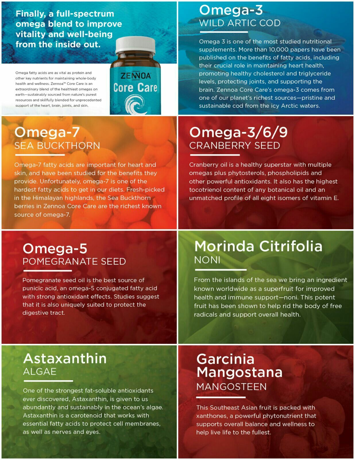 Zennoa Core Care Full Spectrum Of Omega Blends 3 5 6 7 And 9