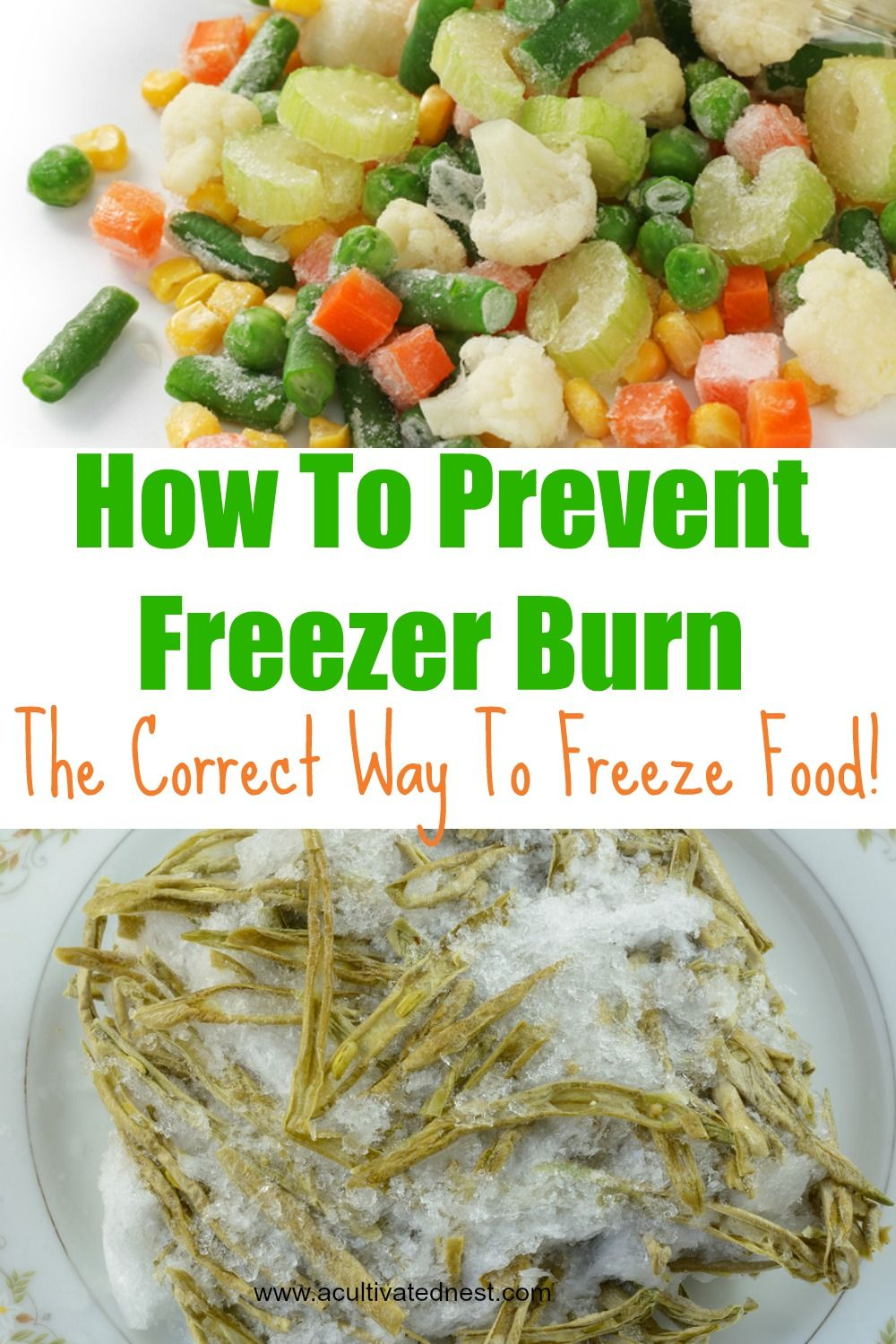 How To Freeze Food And Prevent Freezer Burn Frozen Meals Food