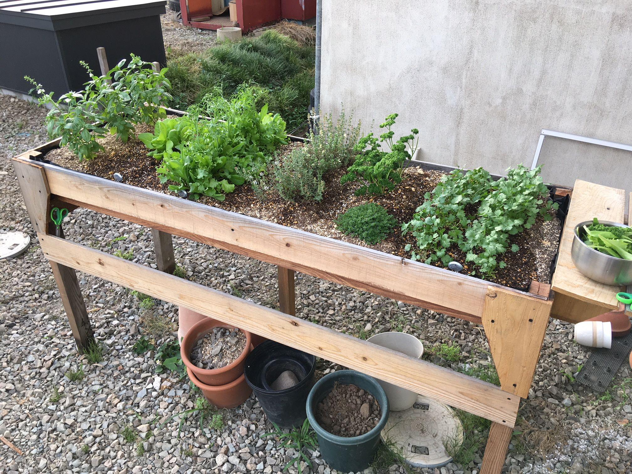 ベジトラグを自作しました 家庭菜園 ハーブ ベジトラグ