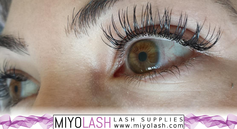 eyelash extension supplies canada | Miyo Lash | Eyelash extension