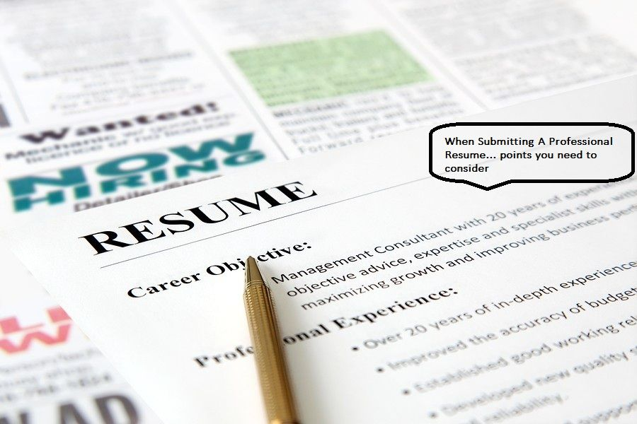 When Submitting A Professional Resume u2013 you need to make it look - making a professional resume