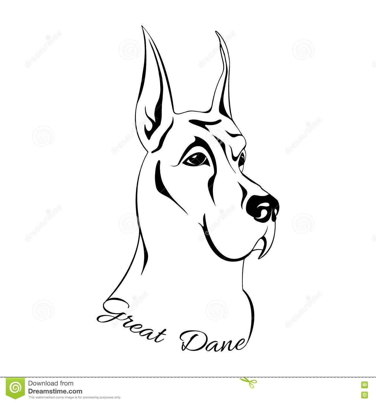 Dog Head Great Dane Download From Over 64 Million High Quality
