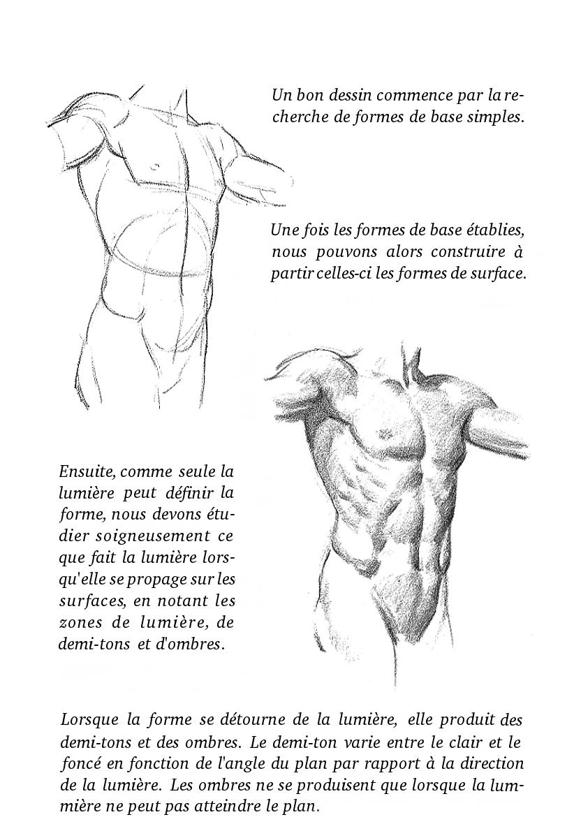 Francais Traduction Francaise Du Livre D Andrew Loomis