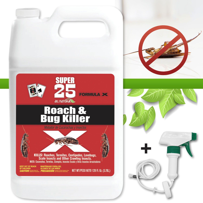 Bug Killer Spray