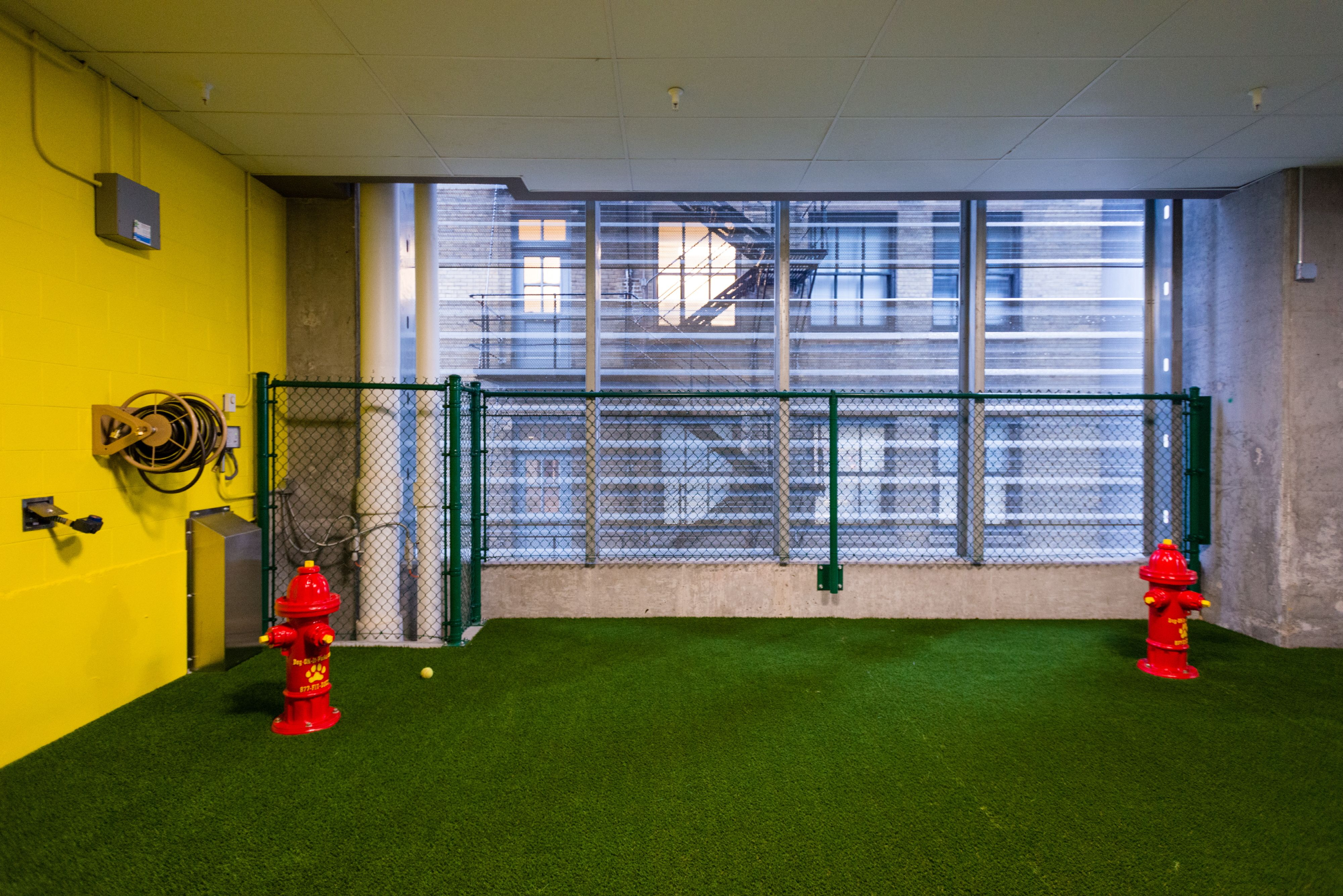 Our indoor Dog Run located on the 8th floor is a convenient place to ...