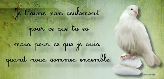 Bon Vendredi De Belles Citations Damour Merci De Vos