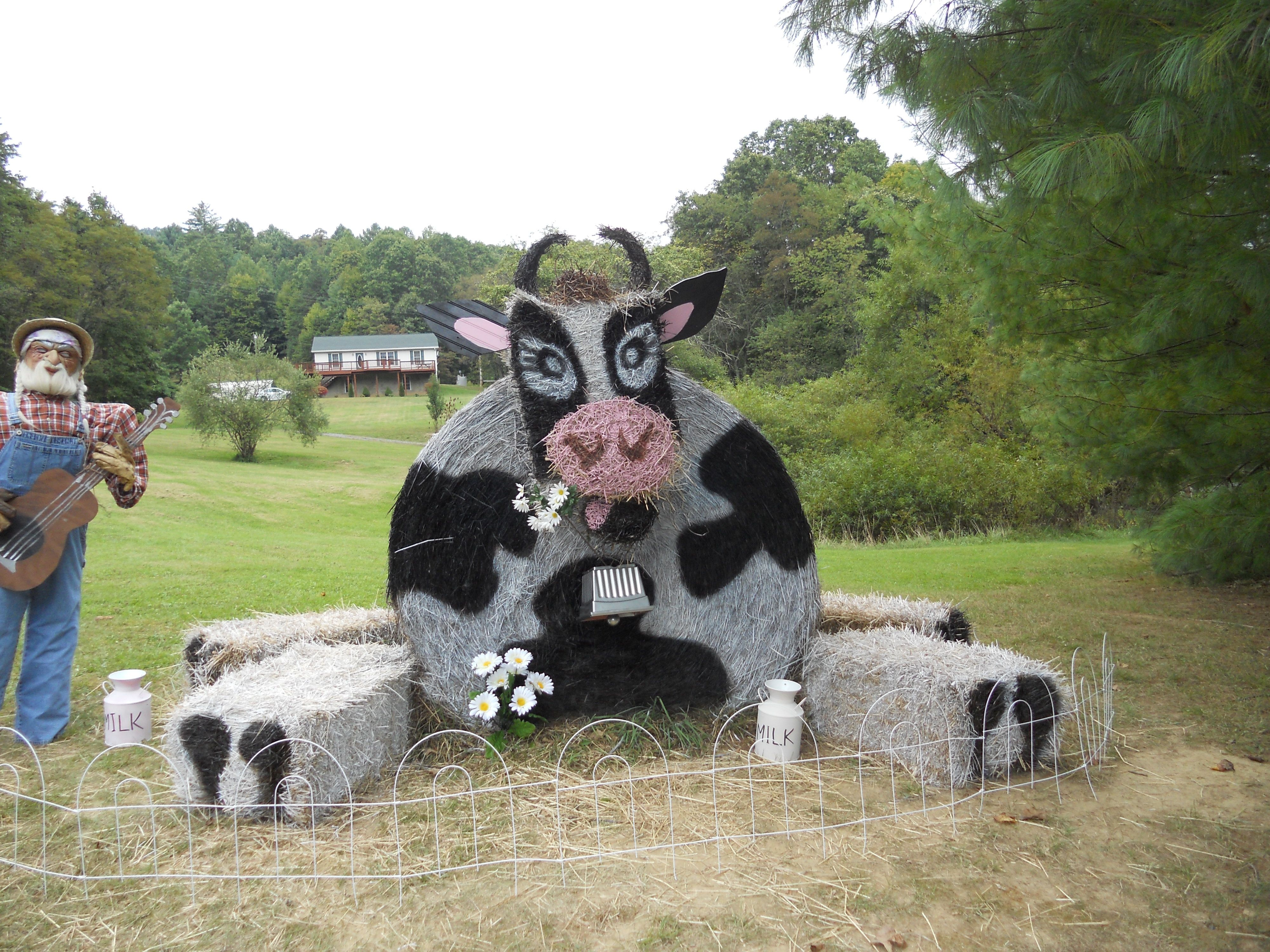 Pin by County of Bath Tourism on Hay Bale Decoration