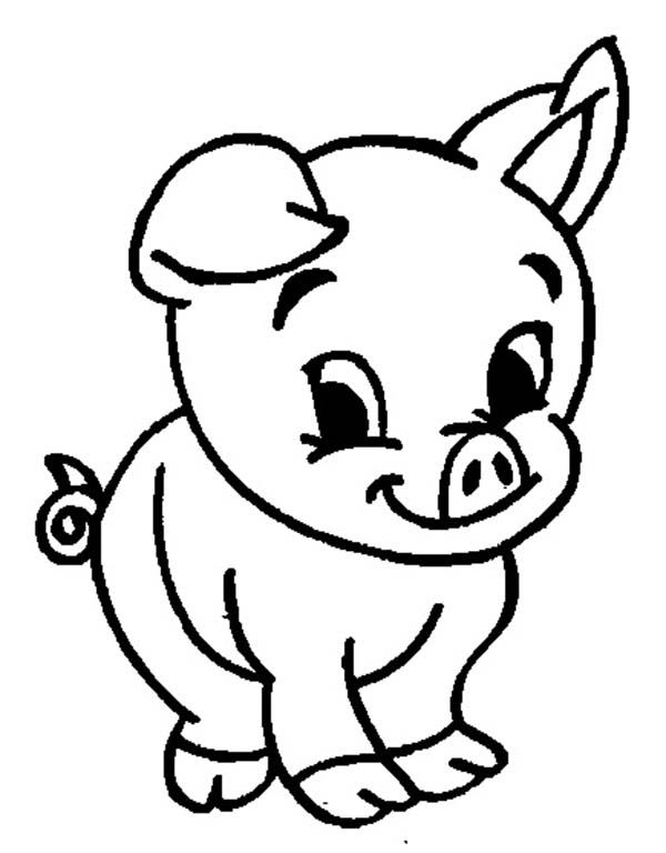 Coloring Page Pig Cute Baby Pigs Pig Cartoon Animal Coloring Pages