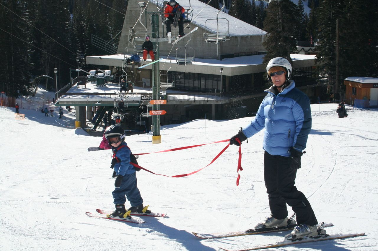 Ski ing [Do's and Don't of Ski Harnesses] | Skiing | Pinterest