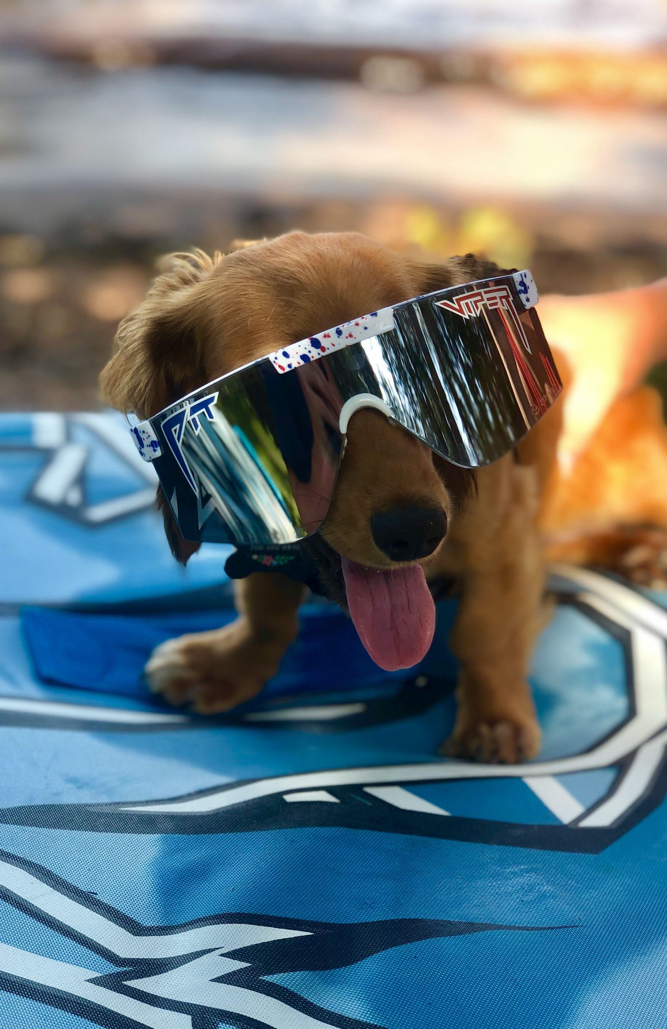 The Merika 2000 in 2020 Pit viper sunglasses, Pit viper