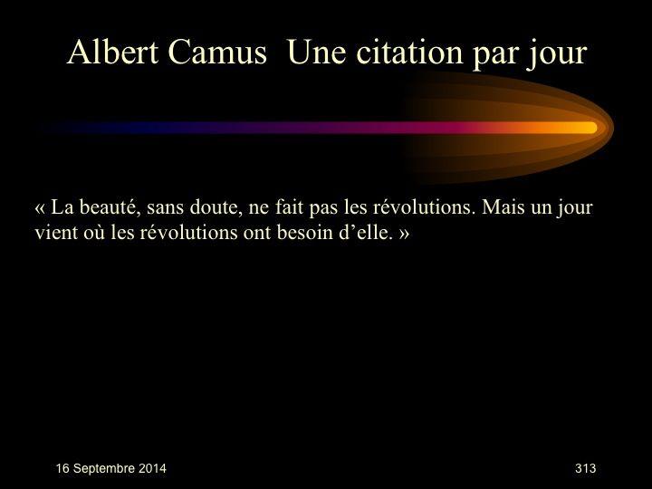 Albert Camus (1913-1960) n° 313