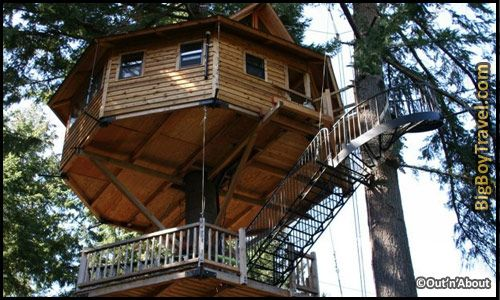 Best Treehouse Hotels In The World Top 10 Out N About Treesort Oregon